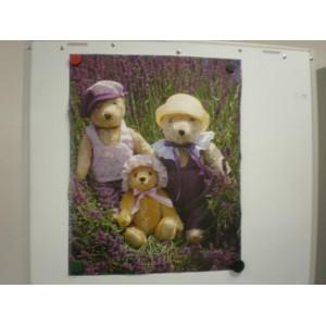 Poster - Teddys